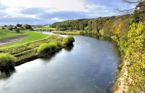 View of the River Tweed from Milne Graden Estate