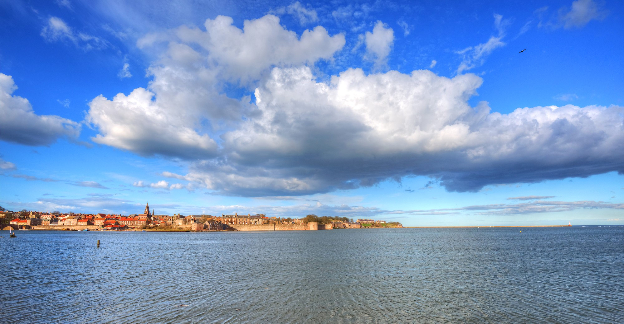 Berwick upon Tweed (3)