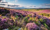 Simonside Hills overlooking Cheviot Hills, Northumberland National Park