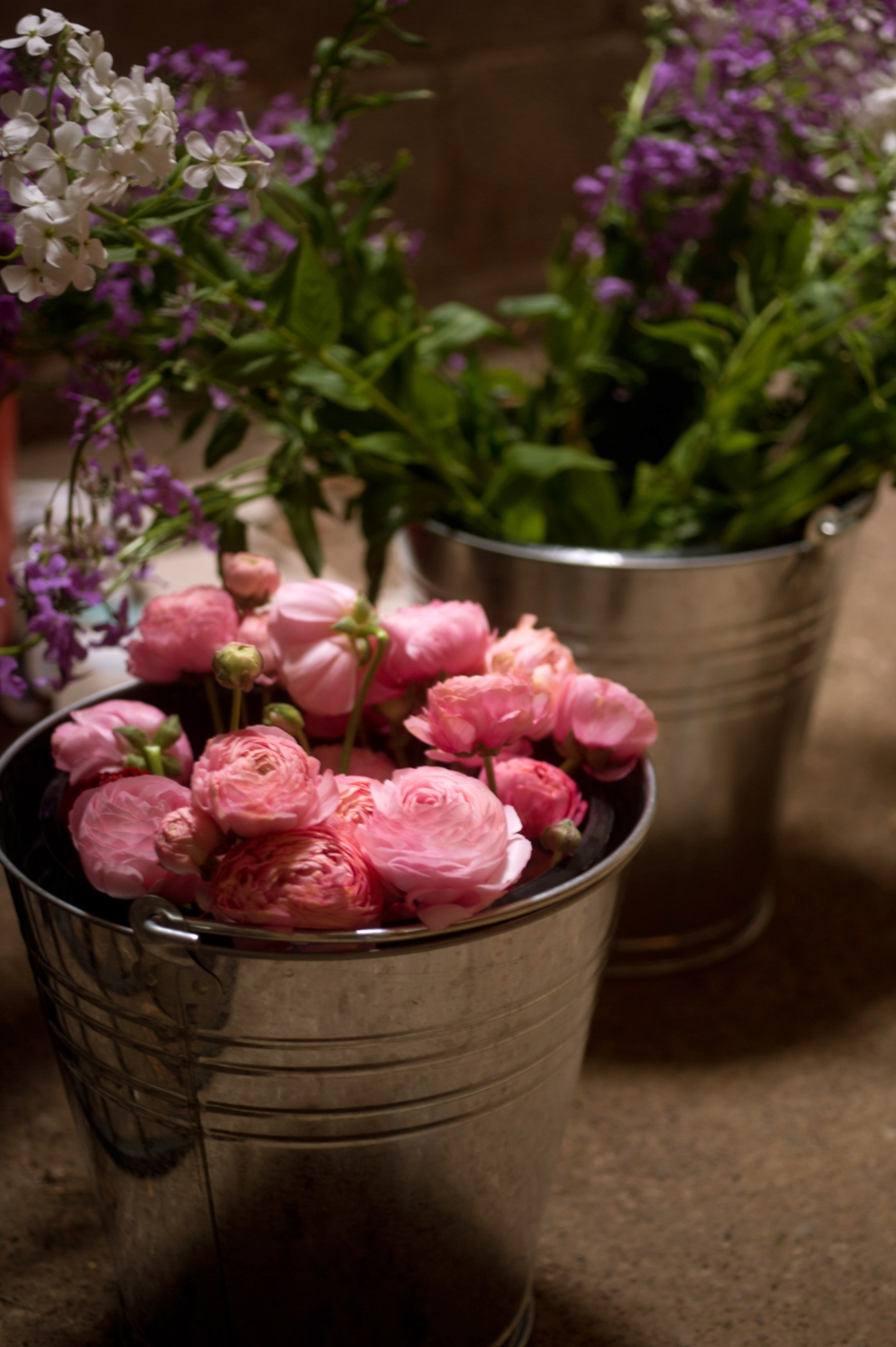 Silver buckets of freshly picked flowers here at Ginger House Garden in Northumberland.