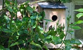 Old Mill Cottage - bird box in garden