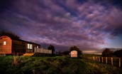 Foxglove - for cosy winter stays and dramatic skies