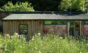 The Potting Shed - external and wild flower meadow