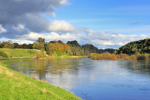 The River Tweed in Autumn