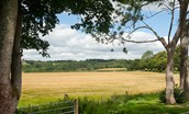 Dryburgh Steadings - view over nearby countryside